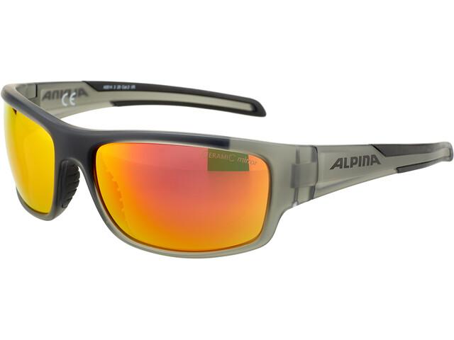Alpina Testido Bril, anthracite matt-black
